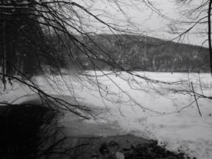Der Alpsee im Winter 2013