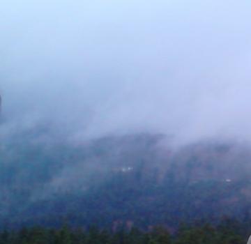 Birnbach im Nebel