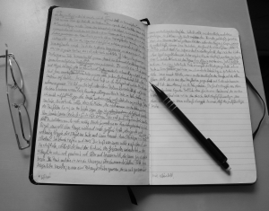 Manuskript2