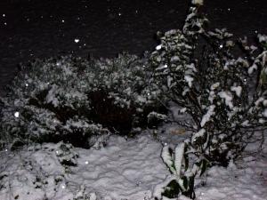 winterimnovember